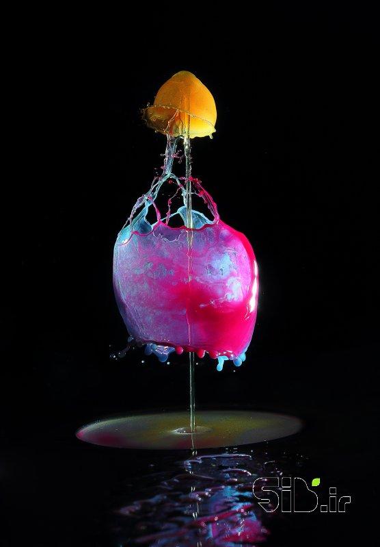 قاب عکس مدرن drops3 نمای نزدیک ( ماکرو)  اثر مصطفی نادرپور