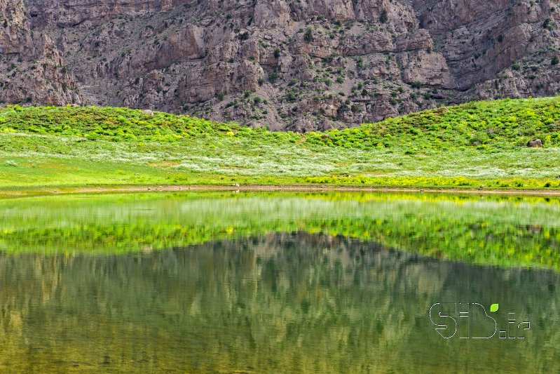 قاب عکس ساعت شني منظره   طبیعت / روستایی اثر داود ایزدپناه