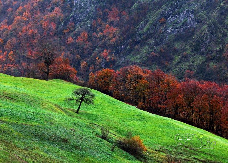 قاب عکس زندگی  بخش منظره   طبیعت / روستایی اثر جیران باقری