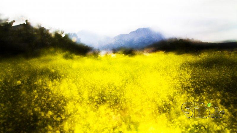 قاب عکس مدرن بهار آبستره اثر مسعود مختاری