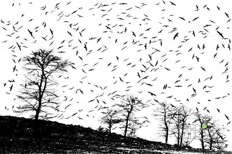 قاب عکس هبوط آبستره اثر علی  اصغری معلم کلایی