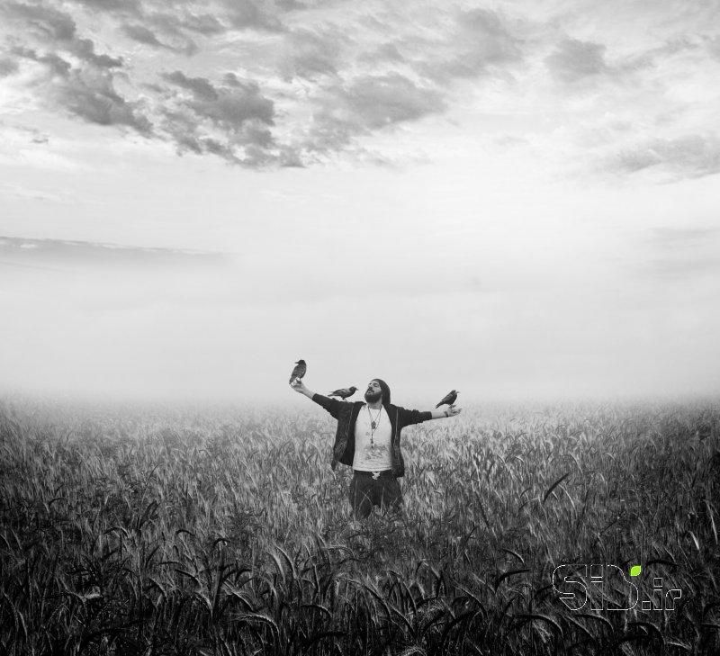 قاب عکس Scarecrow Craven | مترسک ترسو فرای واقعیت / فوتو مونتاژ و حیات وحش  / حیوانات و معنا گرا اثر حسین مهرزاد