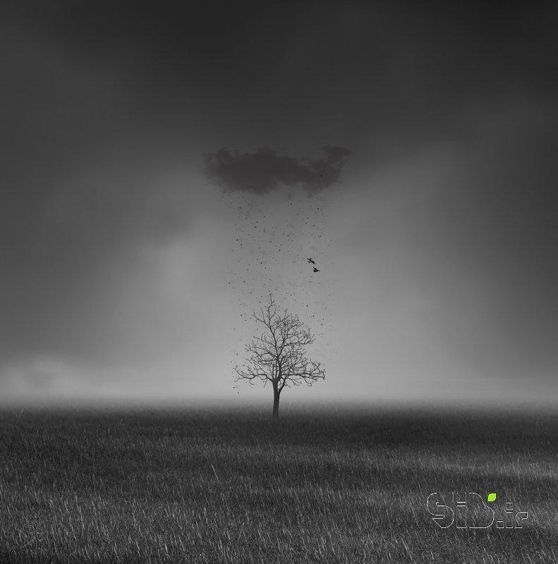 قاب عکس Black Snow   برف سیاه فرای واقعیت / فوتو مونتاژ و معنا گرا اثر حسین مهرزاد