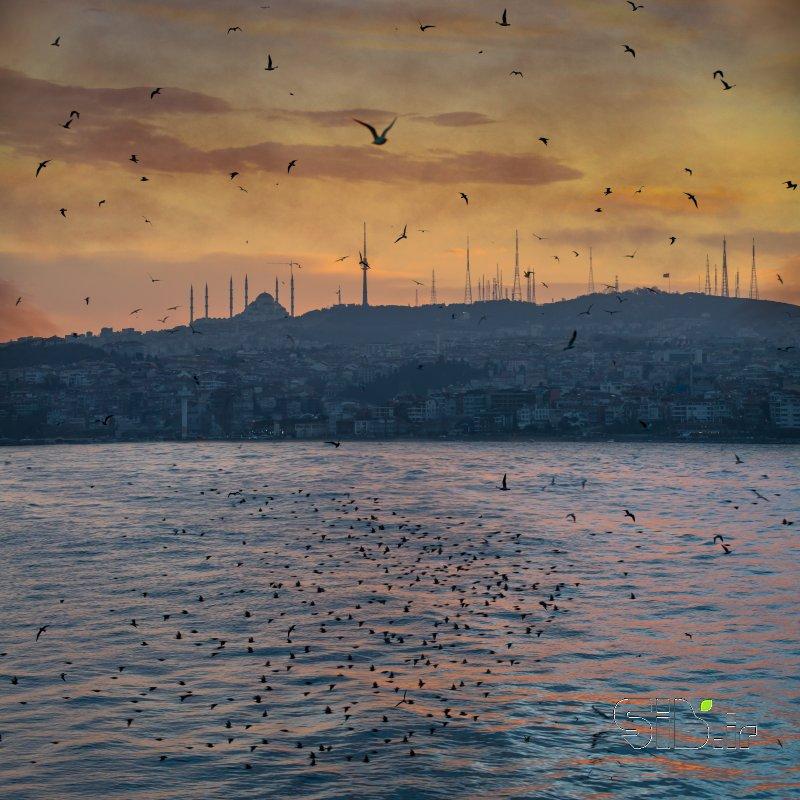 استانبول زیبا