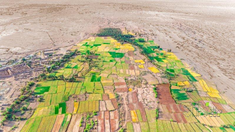 قاب عکس مدرن بهار در تابستان آبستره اثر محمد رضا معصومی