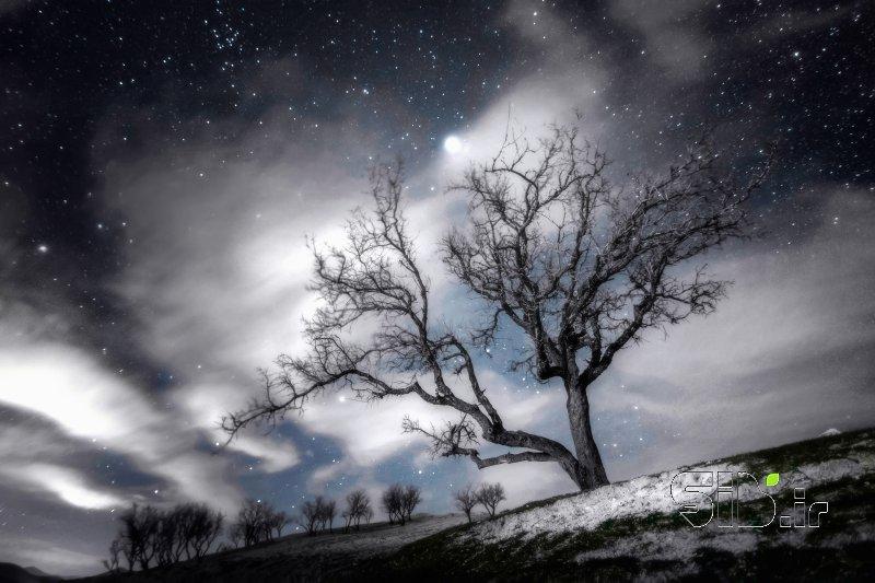 شب سرد