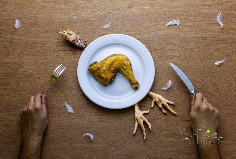 قاب عکس مدرن وقت ناهار فرای واقعیت / فوتو مونتاژ اثر امین روشن افشار