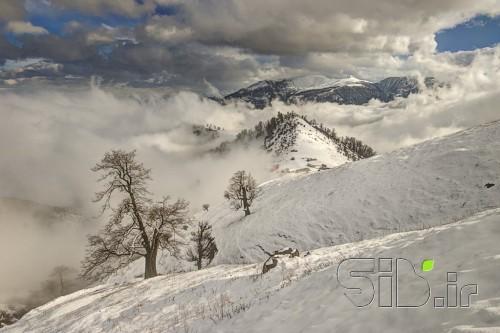 چهار فصل ( زمستان  )