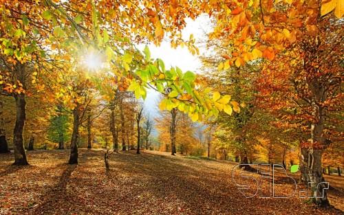 پاییز و خورشید