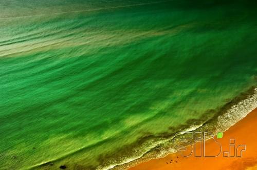 دریای سبز
