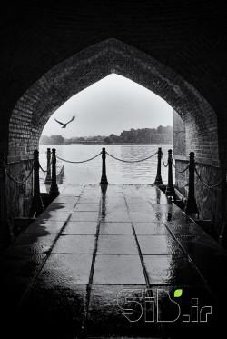 Zayandehroud Rainy