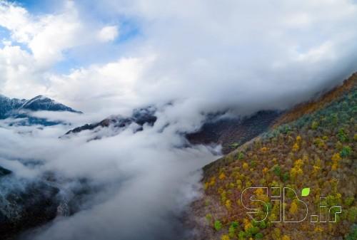 پاییز ابری