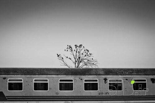 ایستگاه آخر