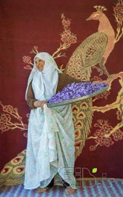مادربزرگی از جنس زعفران