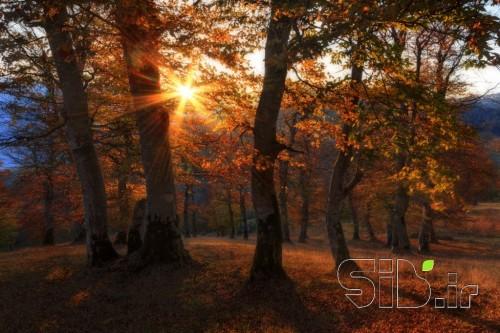 غروب  و پاییز