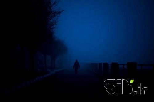 پرسه در مه