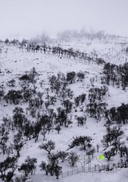 تپه ی برفی