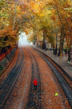 ایستگاه راه آهن بیشه 4
