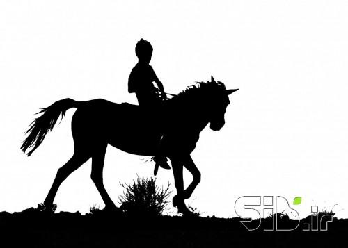 چابک سوار (equestrian)
