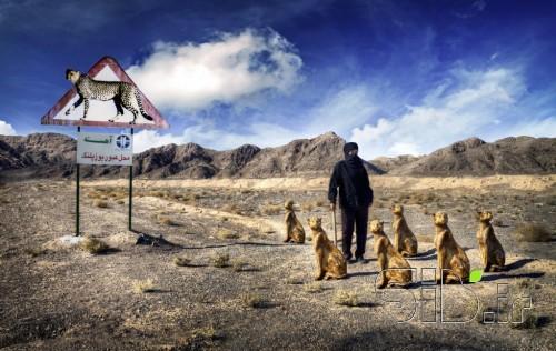 نقدی بر ماجرای یوزپلنگ ایرانی