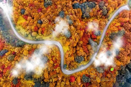 پاییز سه هزار