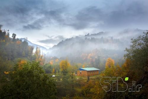 خانه ای میان مه
