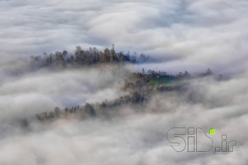 Surrounded in the Clouds