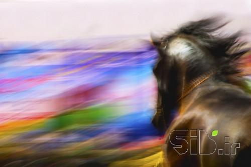 اسب رویایی