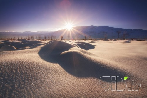 Sparkle Snow